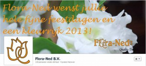 facebook_omslag_floraned