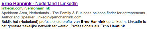 Erno Hannink LinkedIn in Google