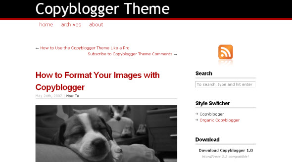 Review thesis wp theme